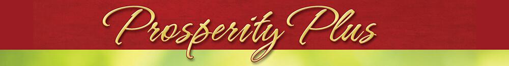 Prosperity Plus Program